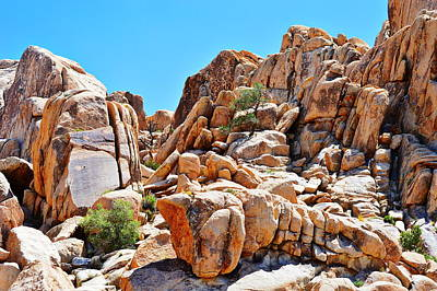 Photograph - Prehistoric Ripples - Joshua Tree National Park by Glenn McCarthy Art and Photography