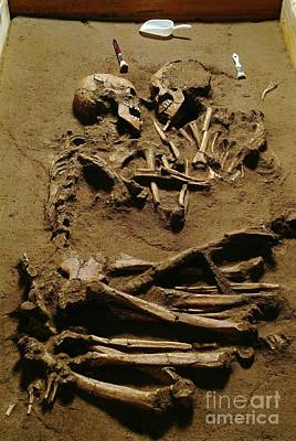 Intimate Relationship Photograph - Prehistoric Skeletons by Science Photo Library