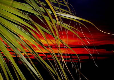 Prelude To A Sunset Kiss Original by Debbie May