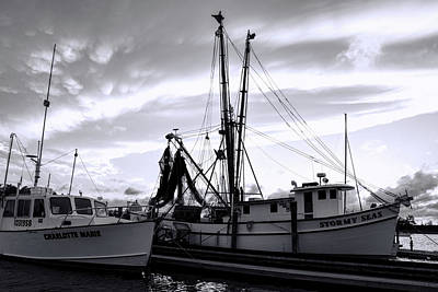 Photograph - Safe Harbor by Ed Waldrop