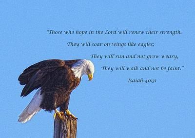 Photograph - Preparing For Patriotic Flight Eagle Inspirational by Amanda Smith