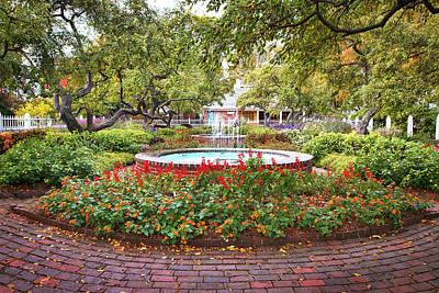 Prescott Photograph - Prescott Park Garden Foliage by Eric Gendron
