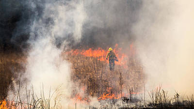 Photograph - Prescribed Burn 2 - Uw Arboretum - Madison - Wisconsin by Steven Ralser