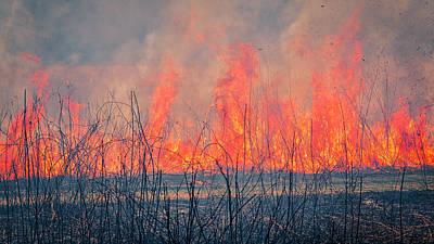 Photograph - Prescribed Burn 3 - Uw Arboretum - Madison - Wisconsin by Steven Ralser