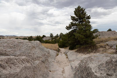Photograph - Preserved Wagon Ruts Of The Oregon Trail On The North Platte River by Carol M Highsmith