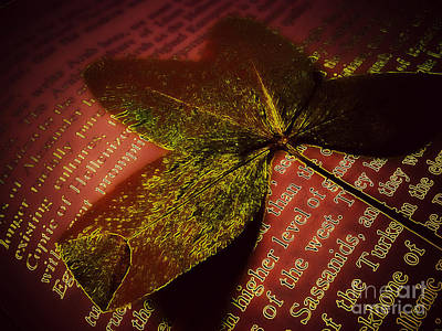 Photograph - Pressed Leaf by Eve Penman