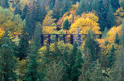 Photograph - Preston-snoqualmie Trail by Robert Meyers-Lussier