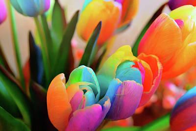 Photograph - Prettiest Petals by JAMART Photography