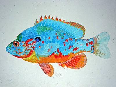 Pretty Blue Fish Art Print by Don Seago