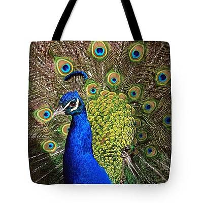 Photograph - Pretty Boy-tote by Donna Kennedy