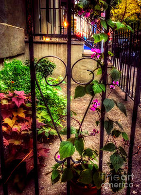 Photograph - Pretty City Garden by Miriam Danar