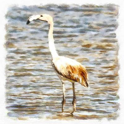 Painting - Pretty Flamingo Fledgling Watercolor by Tracey Harrington-Simpson
