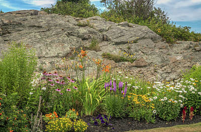 Photograph - Pretty Flower Garden by Jane Luxton