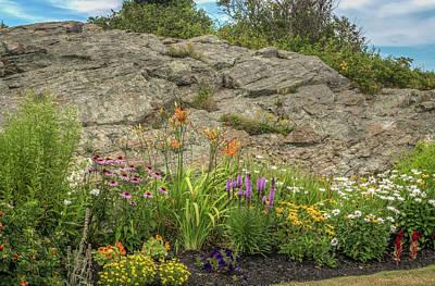 Photograph - Pretty Flower Garden by Jane Luxton