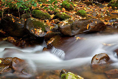 Photograph - Pretty Flowing Water by Jill Lang