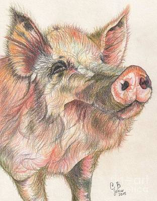 Pretty Imporkant Pig Art Print by Chris Bajon Jones