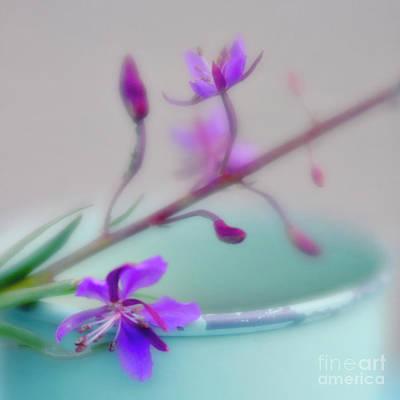 Photograph - Pretty In Pastel 2 by Priska Wettstein