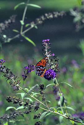 Photograph - Pretty In Purple by Kay Lovingood