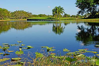 Tropical Lake Original
