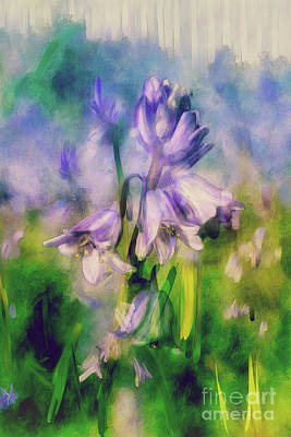 Digital Art - Pretty Little Bluebells by Lois Bryan