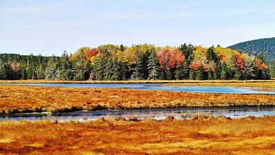 Photograph - Pretty Marsh 2 by Mike Breau