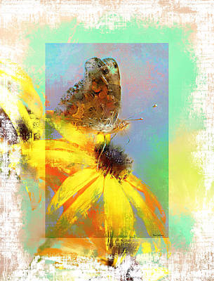 Photograph - Pretty Painted Lady by Tina LeCour