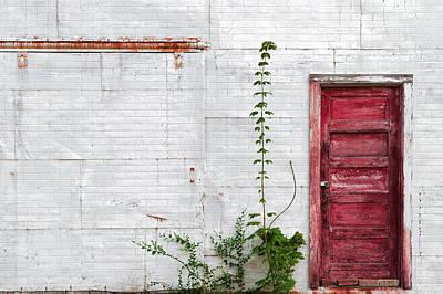 Photograph - Pretty Passage by Todd Klassy