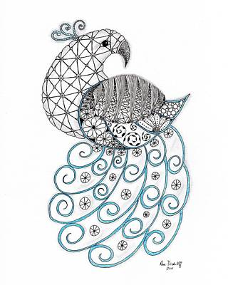 Zendoodle Drawing - Pretty Peacock by Paula Dickerhoff