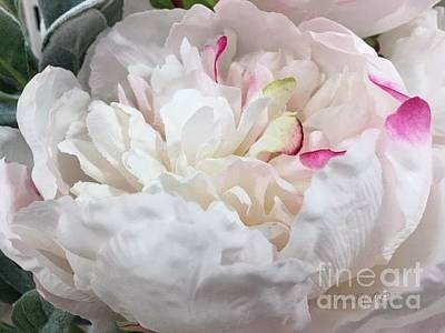 Photograph - Pretty Peony Bowl by Jeannie Rhode