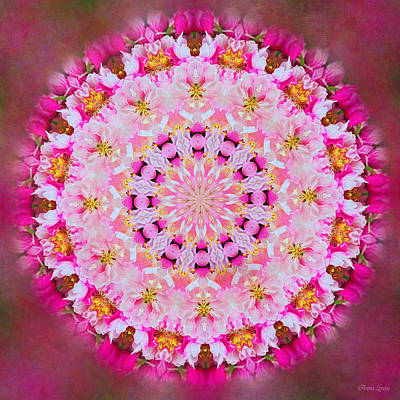 Photograph - Pretty Pink Floral Kaleidoscope by Anna Louise