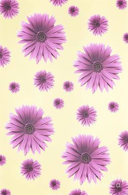 Digital Art - Pretty Pink Flowers by Rachel Hannah