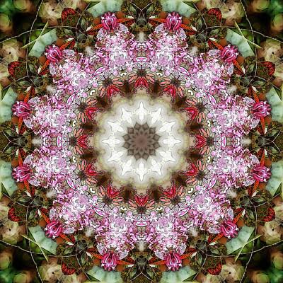 Digital Art - Pretty Pink by Frans Blok
