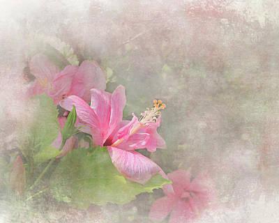 Pretty Pink Hibiscus Art Print
