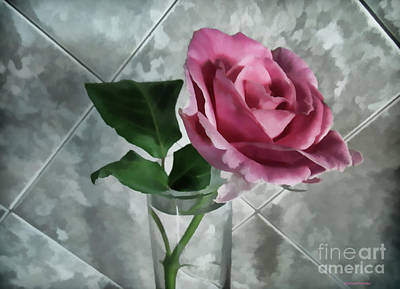 Photograph - Pretty Pink Rose by Roberta Byram