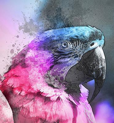 Pretty Polly Art Print by Richard Sayer
