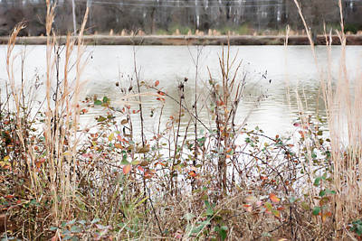 Photograph - Pretty Pond by Gina O'Brien