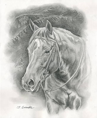 Horse Pencil Drawing Drawing - Pretty Sunflower by Jana Goode