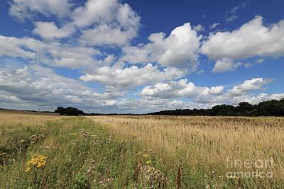 Photograph - Pretty Surrey Countryside by Julia Gavin