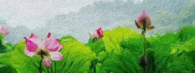 Painting - Pretty Water Lilies by Unknown Preesented by Joy of Life Art