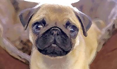 Digital Art - Priceless Pug by Antonio Moore