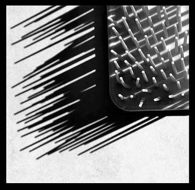 Photograph - Prickly Abstract Black And White Square by Karen Adams