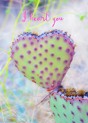 Photograph - Prickly Heart by Karen Stephenson