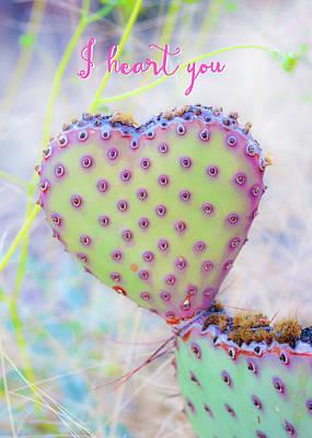 Photograph - Prickly Heart by Karen Stephenson