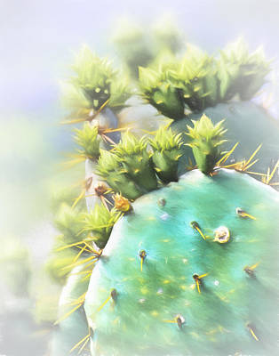 Photograph - Prickly Pear Cactus by David and Carol Kelly