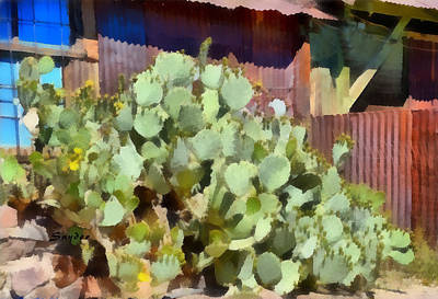 Photograph - Prickly Pear Cactus Oatman Arizona by Barbara Snyder