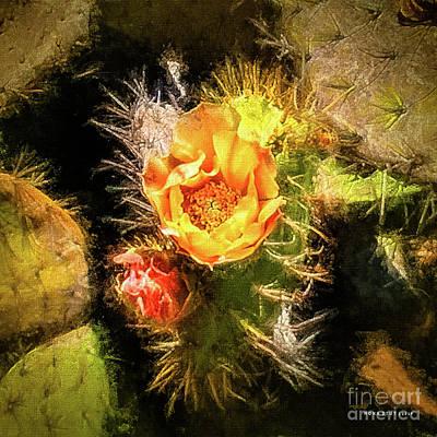 Prickly Pear Cactus Red Orange Yellow Art Print by Mona Stut