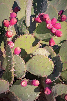 Digital Art - Prickly Pear Cactus by Steve Kelley