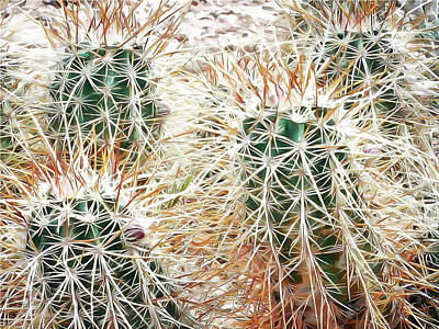 Digital Art - Prickly Protection by Leslie Montgomery