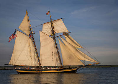 Bird At Sea Photograph - Pride Of Baltimore II by Dale Kincaid