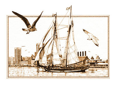 Drawing - Pride Of Baltimore by John D Benson